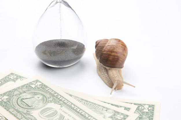 砂時計の横にあるカタツムリと白い背景のドル。収入の増加におけるスピードと安定性。仕事と休息の時間。金融ビジネスの成功。時間投資目標