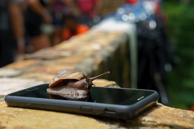 Улитка на смартфоне, технология быстро и медленно