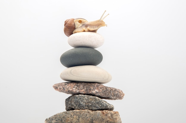 Snail on top of a stone pyramid