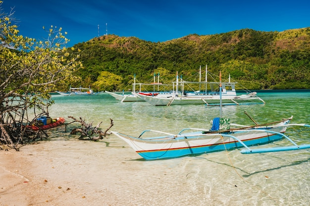 Snake island and tourist daily trip boats moored in lagoon, el nido, palawan, philippines