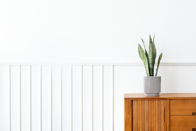 Snake plant in a gray plant pot on a wooden cabinet