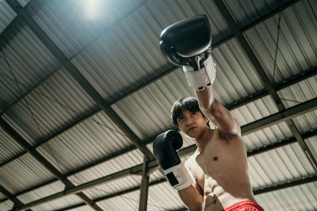 링의 권투 선수 아래에서 사진을 스냅하여 copyspace로 펀치 모션을 만듭니다.
