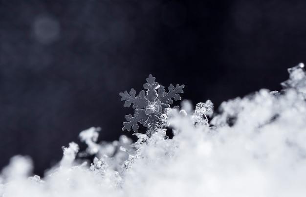 눈이 내리는 동안 찍은 작은 눈송이의 스냅 샷