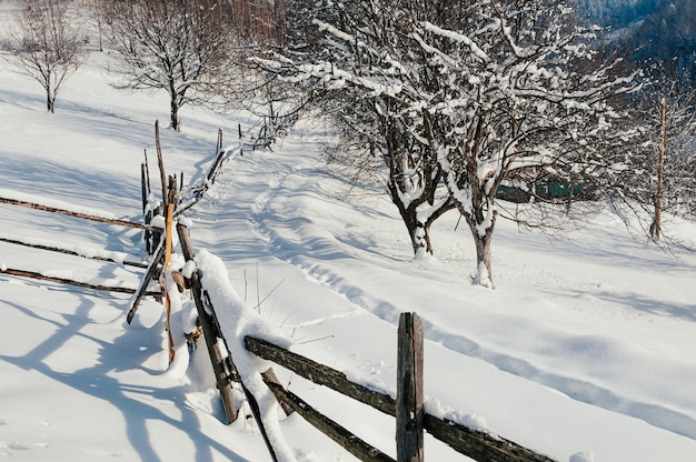 Snow-capped fence countryside winter sunny landscape