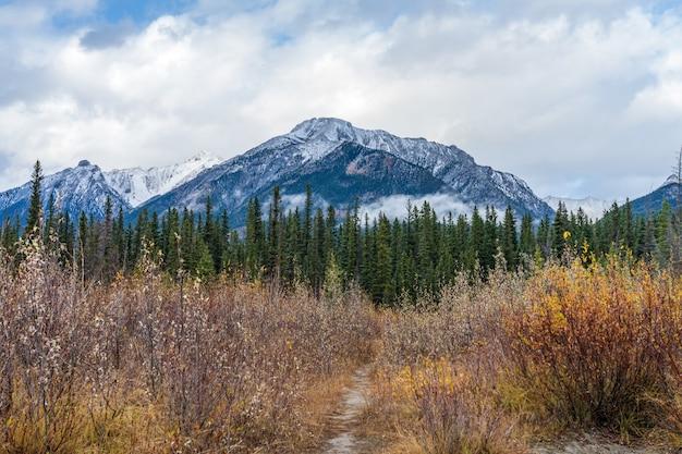 秋には雪をかぶったマウントレディマクドナルド山。