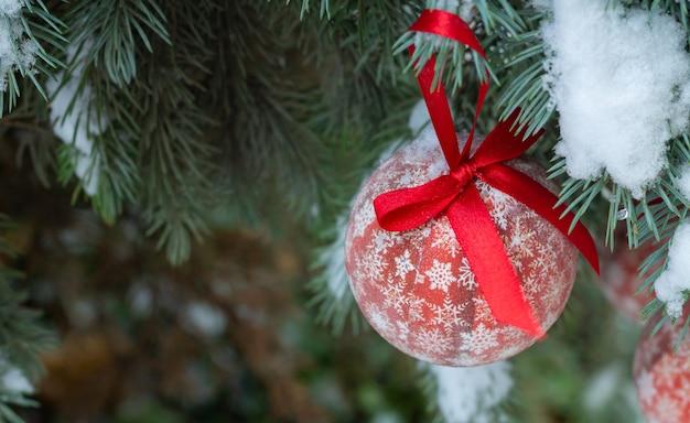 Снежная ветка елки с красным шаром