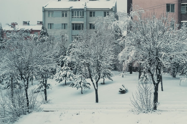 Snow cover in the residential neighborhood