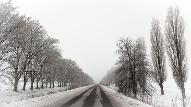 Snow-covered empty asphalt road with hoar-frost trees on both sides background