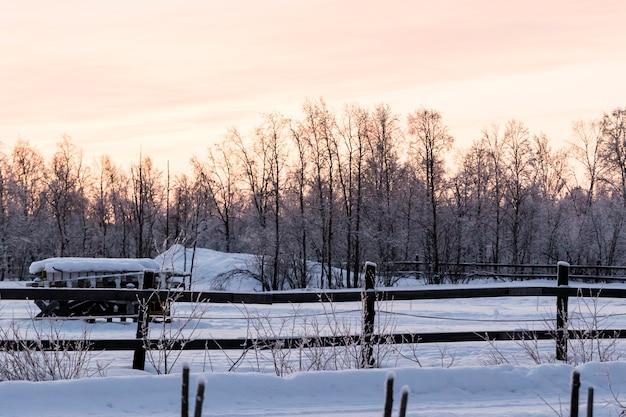 スウェーデン北部の雪で覆われた森林