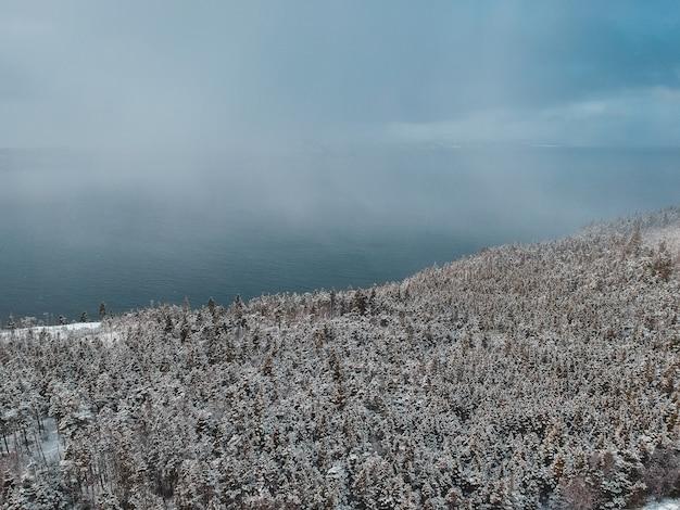 Заснеженный лесной берег