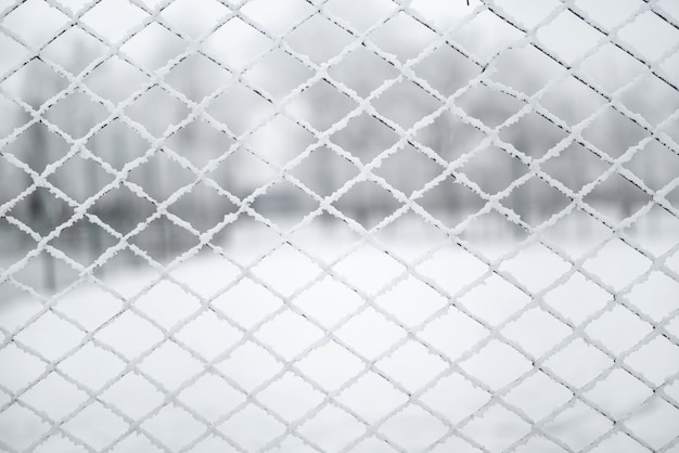 Snow-covered grid. the lattice fence is covered with fresh snow. winter background texture.