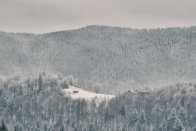 눈 덮인 산 슬로프입니다. 멀리 보이는 작은 집