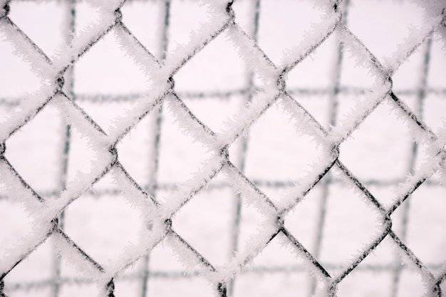 Snow-covered netting in the fence of the school playground