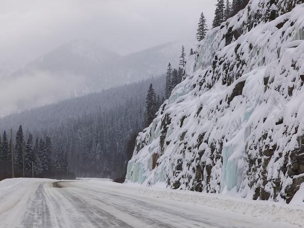 Snow covered road passing through forest, british columbia highway 97, british columbia, canada