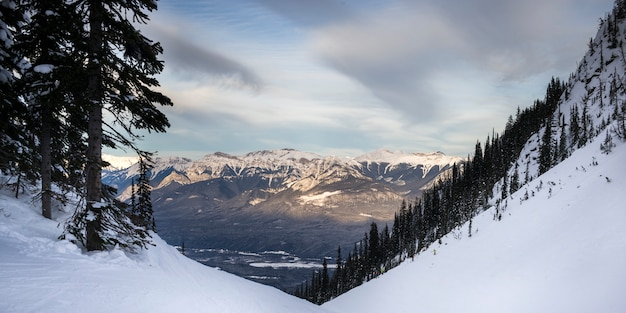 Snow covered valley with mountains in winter,  kicking horse mountain resort, golden, british columb