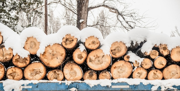 Snow-covered winter log pile, background log pile texture
