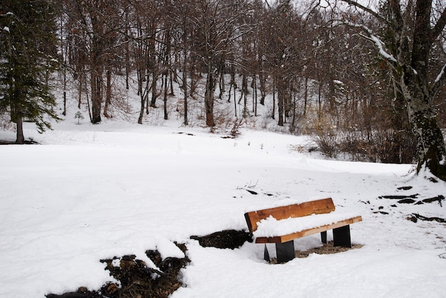 Snow covered wooden bench in a winter nature