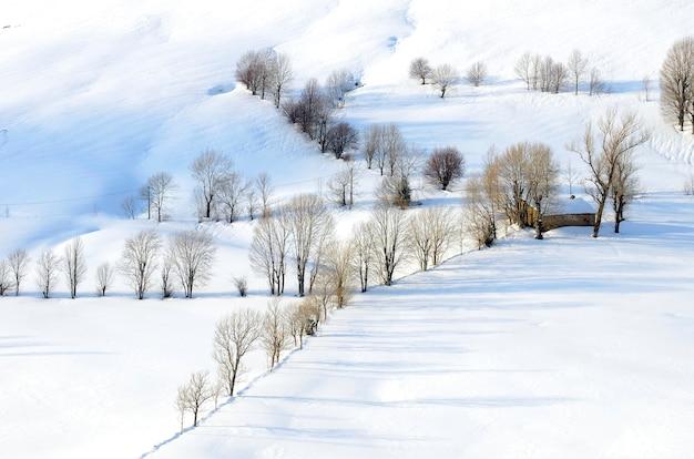 ヴァッレデルパスの牧草地と羊飼いの小屋は雪で覆われています