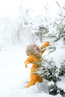 トウヒの枝からの雪が子供の顔に落ちる