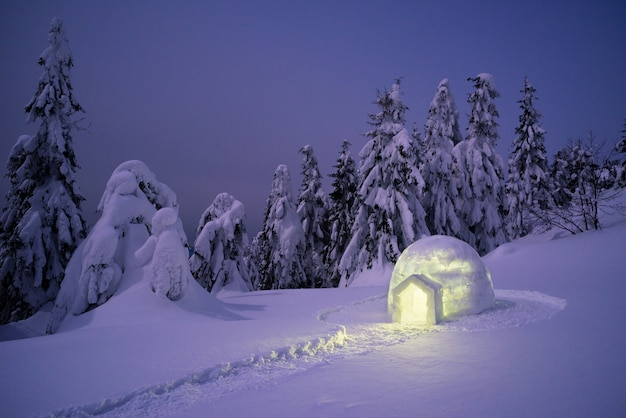 Snow igloo in the winter mountain forest
