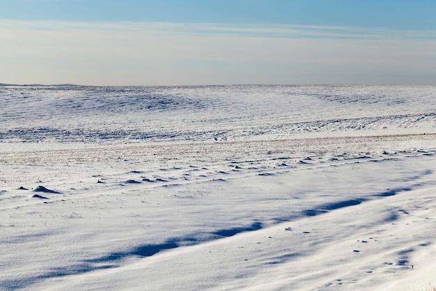 野原で雪が降る