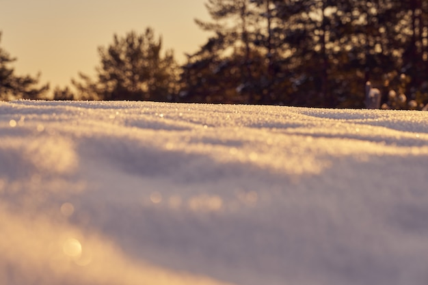 Снег на переднем плане морозным зимним вечером на закате