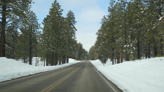 겨울 숲의 눈, 자동차 운전, 미국 겨울 유타의 도로 여행. 침엽수 소나무, 앞유리를 통해 차에서 볼 수 있습니다. 크리스마스 휴가, 12월 브라이스 캐년 여행. 숲으로 가는 에코 투어리즘.