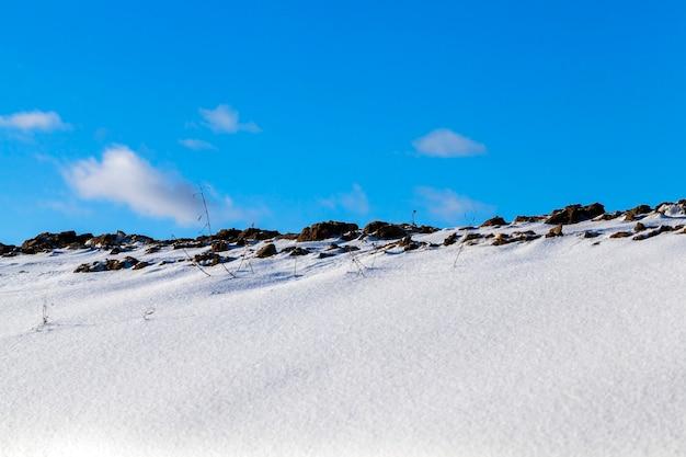 冬の雪を撮影