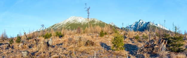 Snow on rocky mountain slope and small fir trees on hill in front.