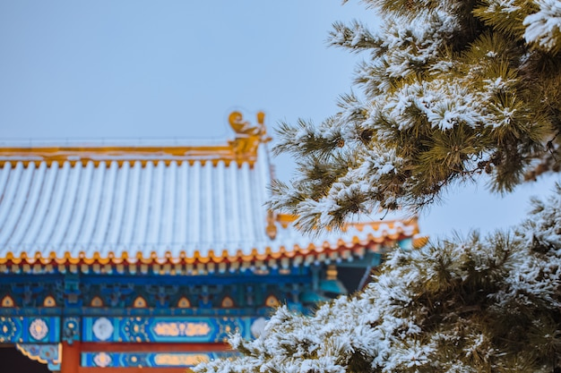Snow view of the forbidden city