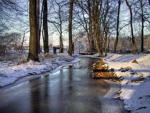 Snow water winter bach mirroring grove