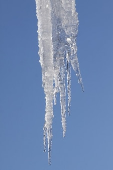 Snow winter ice icicle frost cold