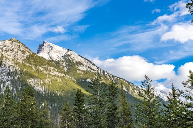 겨울에 푸른 하늘과 흰 구름 위에 눈 덮인 숲이 있는 눈 덮인 마운트 런들 산맥