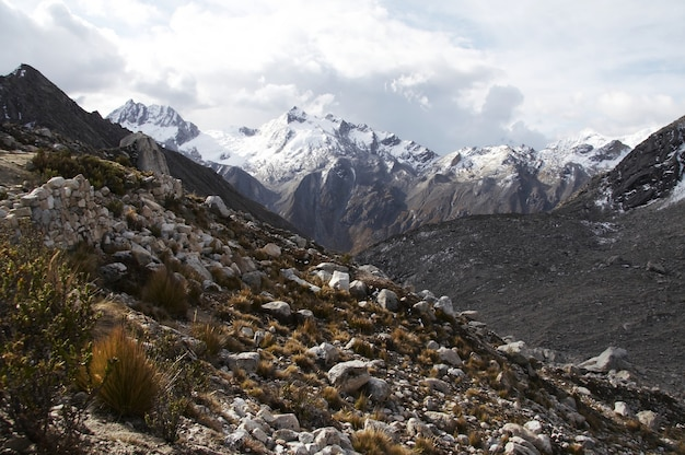 Snowcowered high cordillera mountain and grassland