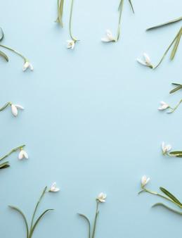 青い背景に円形に配置されたスノードロップの花..春のコンセプトは最小限です。シンプルなフラットレイ。