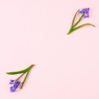 ピンクのパステル背景にスノードロップの花