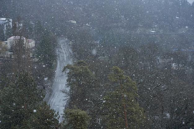 산 도시에 강설량입니다. 산에서 나쁜 날씨입니다. 숲의 배경에 눈 조각입니다.