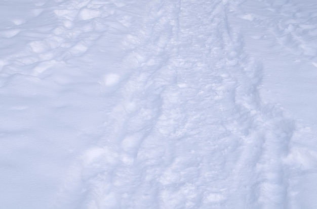 Snowfall texture background. white snow sparkling.