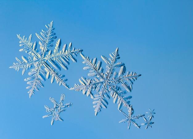 スノーフレーク、ガラス上の天然結晶。美しい幾何学的な自然のパターン。冬、冷ややかな、または新年のコンサート。