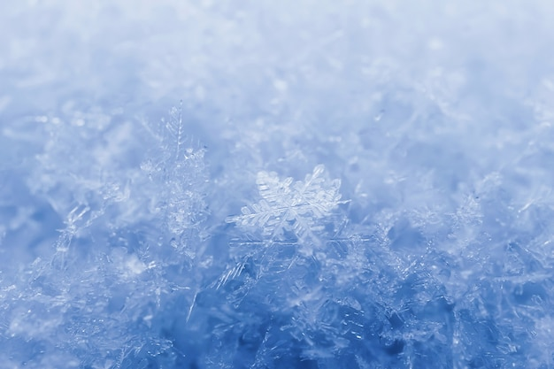 Snowflakes close-up. macro photo. the concept of winter, cold. copy space.