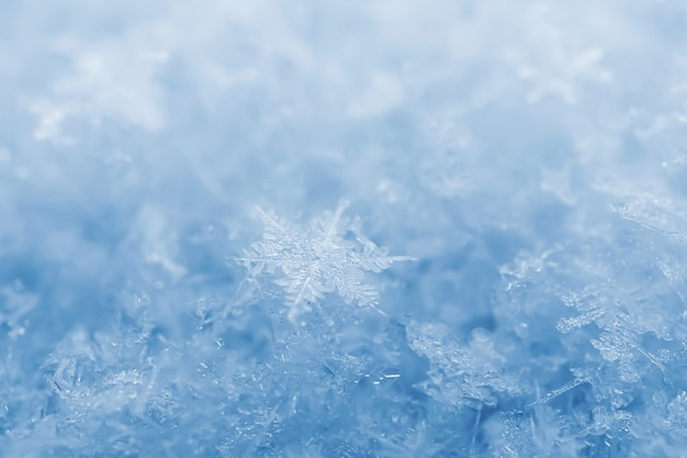 雪片のクローズアップ。マクロ写真。冬、寒さの概念。スペースをコピーします。