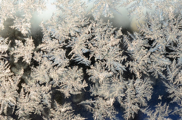Snowflakes frost on window glass pane