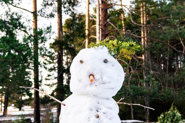 Снеговик и сосновый лес на заднем плане