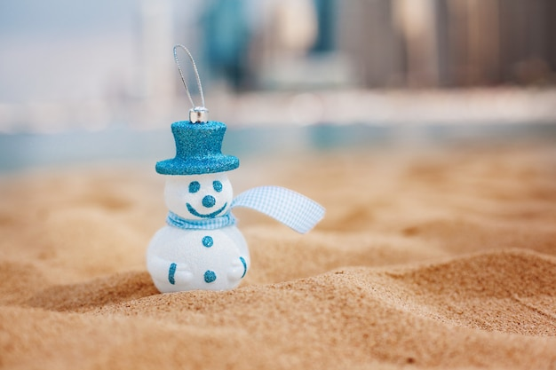 Snowman in blue hat on the beach