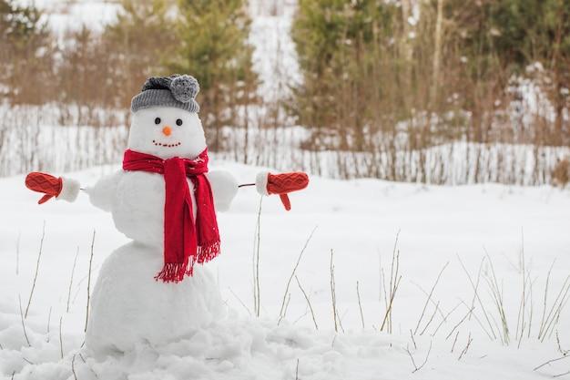 Снеговик в красном шарфе в лесу