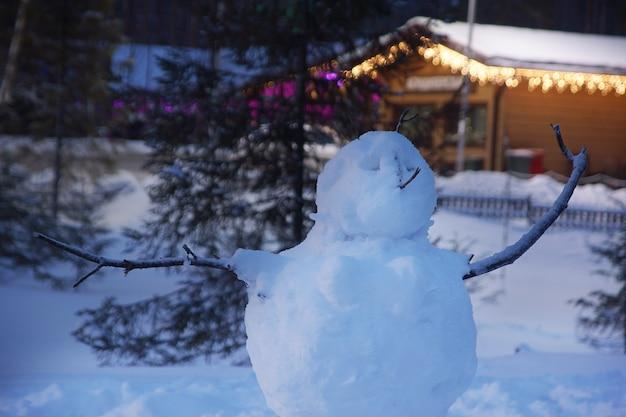 눈사람은 겨울에 별장 근처 거리에 서 있다