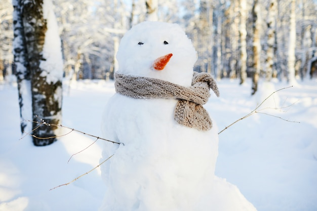 Snowman in winter park