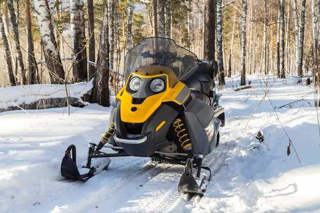Snowmobile in the winter forest.