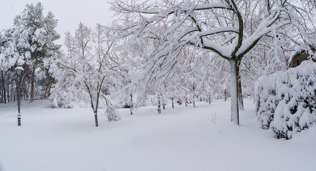 눈보라 filomena로 인해 마드리드의 공원에서 snowscape. 스페인