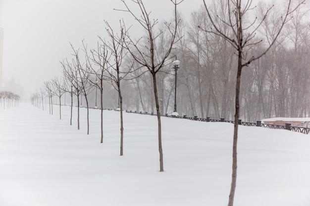 ウォーターフロントの街で吹雪が発生し、大きな雪の吹きだまりが山積みになり、街で嵐が発生しました